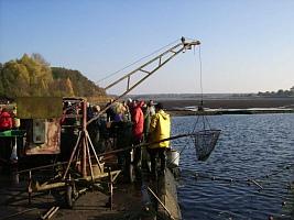 Abfischen am Deetzer Teich